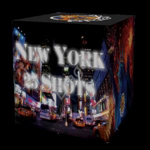 big_3D_NewYork[1] (Custom)